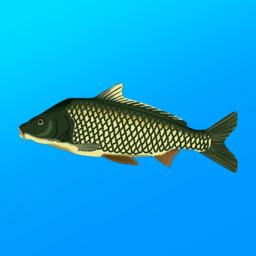 Скачать Реальная рыбалка (Симулятор рыбной ловли)